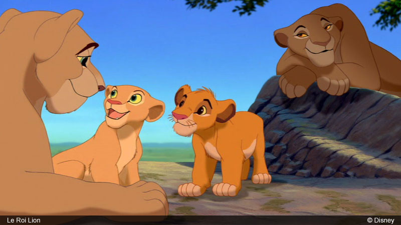le roi lion elle essaye de me bouffer 49 le roi lion 2 - l'honneur de la tribu (1998)mp4 - dht topic: le roi lion elle essaye de me bouffer – 226318 le roi lion 2 — wikipédia.